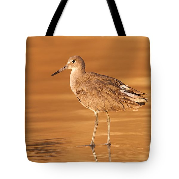 Willet Tote Bag by Clarence Holmes