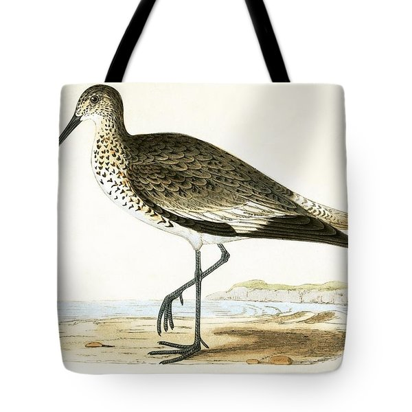 Willet Tote Bag by English School