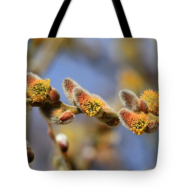 Willow Buds Tote Bag by Donna Kennedy