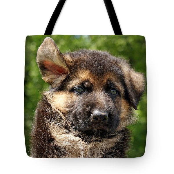 Windy Day Tote Bag by Sandy Keeton