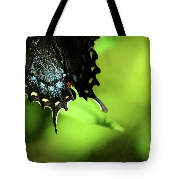 Wings Tote Bag by Rebecca Sherman