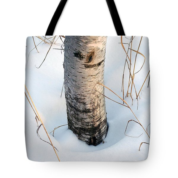Winter Birch Tote Bag by Bill Morgenstern