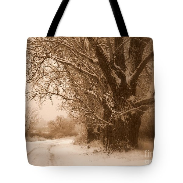 Winter Dream Tote Bag by Carol Groenen