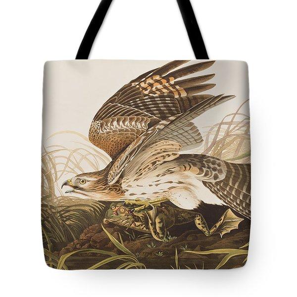 Winter Hawk Tote Bag by John James Audubon