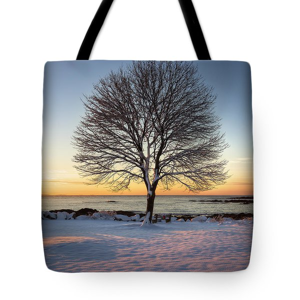 Winter On The Coast Tote Bag by Eric Gendron