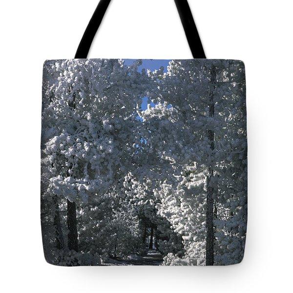 Winter Pathway Tote Bag by Sandra Bronstein