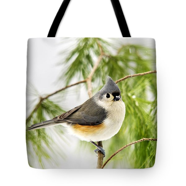 Winter Pine Bird Tote Bag by Christina Rollo