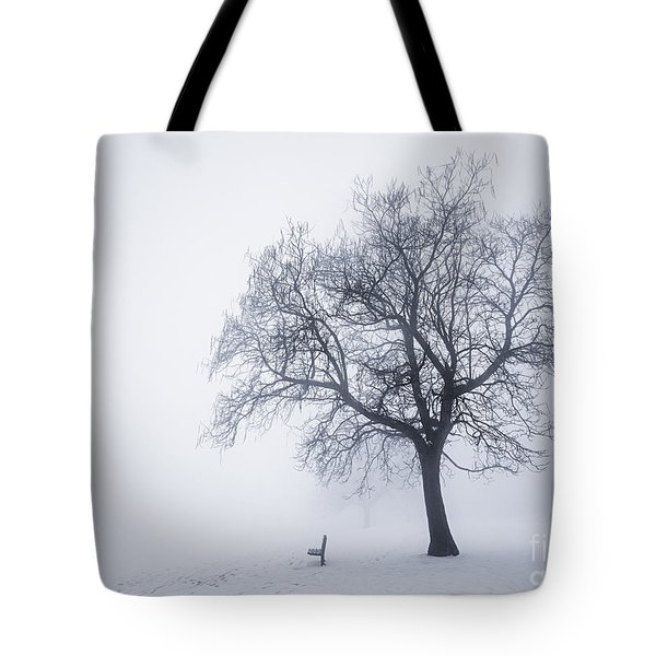 Winter tree and bench in fog Tote Bag by Elena Elisseeva