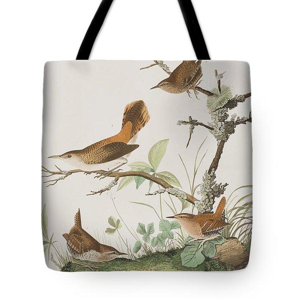 Winter Wren Or Rock Wren Tote Bag by John James Audubon