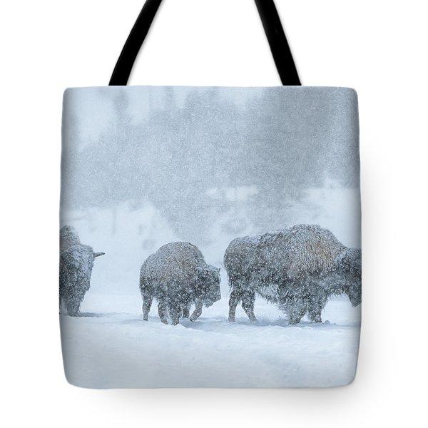 Winter's Burden Tote Bag by Sandra Bronstein