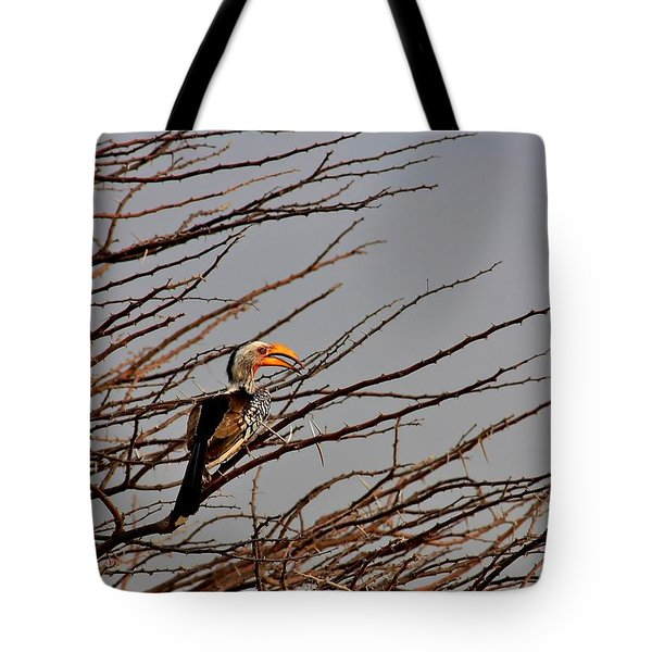 With The Grain Tote Bag by Stacie Gary
