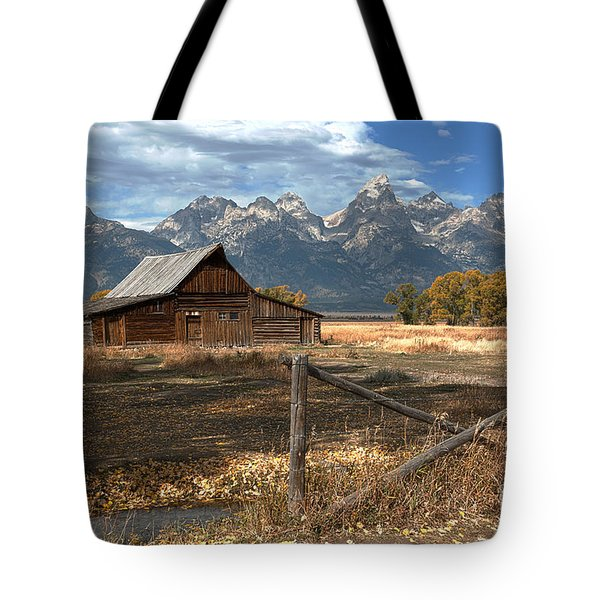 Withstanding The Test Of Time Tote Bag by Sandra Bronstein