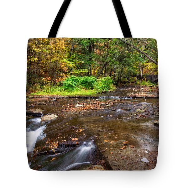 Wolf Creek 2 Tote Bag by Mark Papke