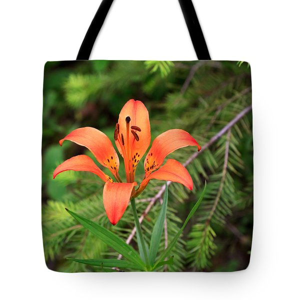 Wood lily also called Prairie lily or Western Red lily Tote Bag by Louise Heusinkveld