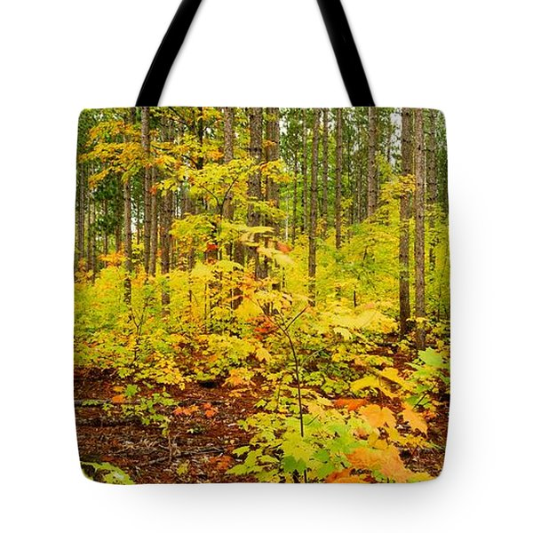 Woodland Panorama Tote Bag by Michael Peychich