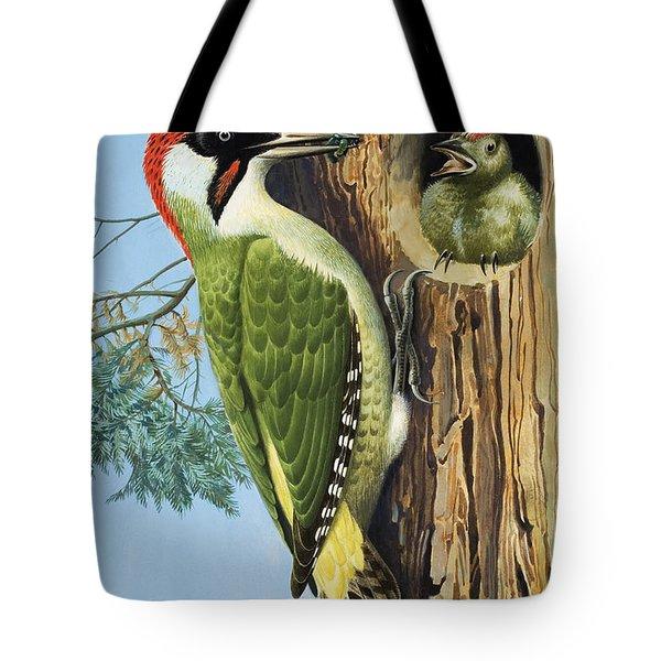 Woodpecker Tote Bag by RB Davis