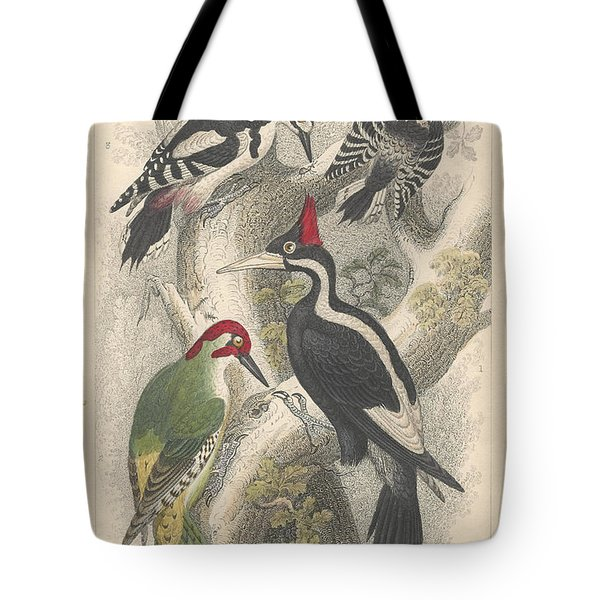 Woodpeckers Tote Bag by Oliver Goldsmith