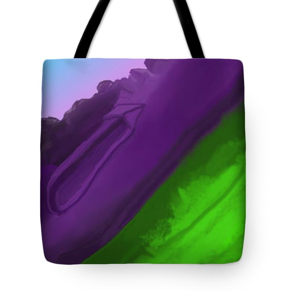 Wtf 1 Tote Bag by David Lane