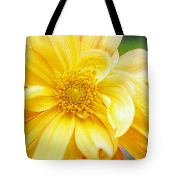 Yellow Dahlia Tote Bag by Kathy Yates