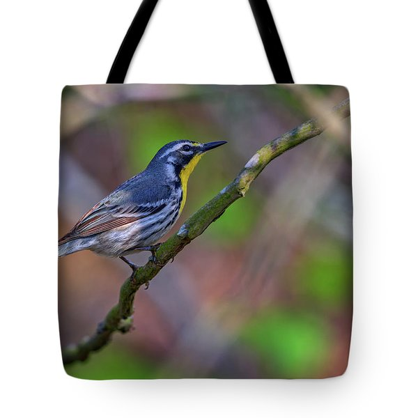 Yellow-throated Warbler Tote Bag by Rick Berk
