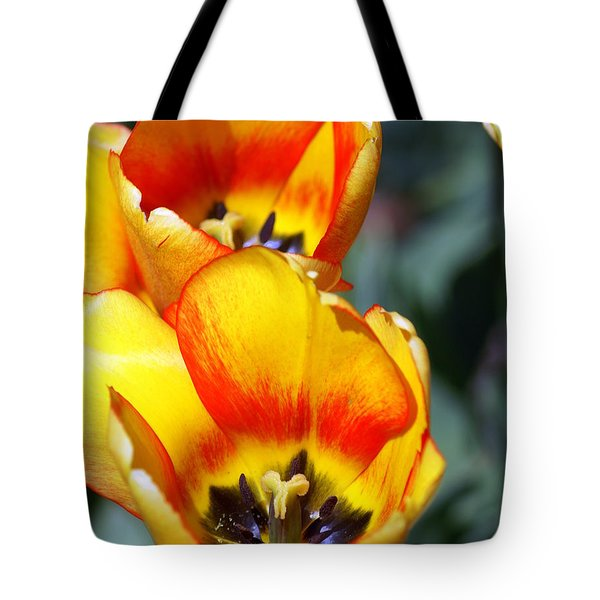 Yellow Tulip Tote Bag by Marty Koch