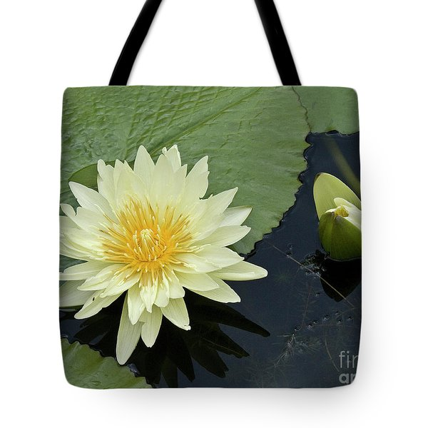 Yellow Water Lily With Bud Nymphaea Tote Bag by Heiko Koehrer-Wagner