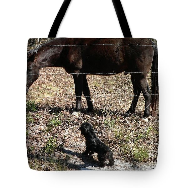 You Lookin At Me Tote Bag by Al Powell Photography USA