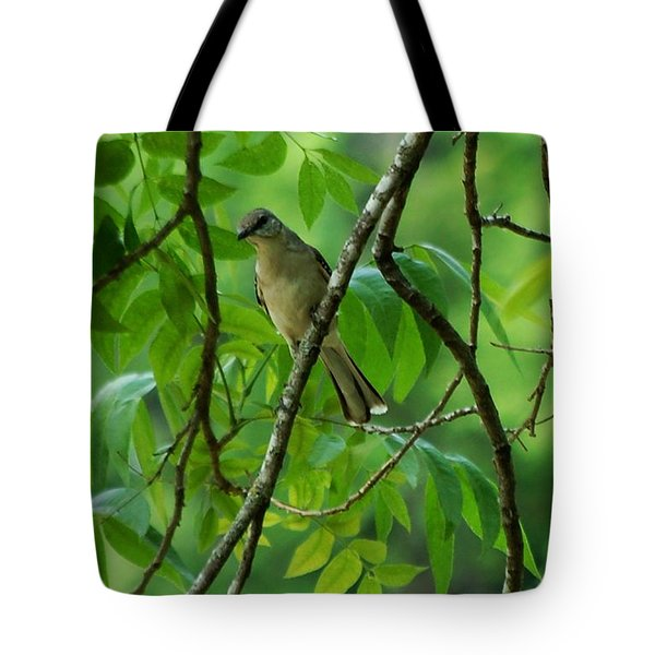 You Looking At Me Tote Bag by David Lane