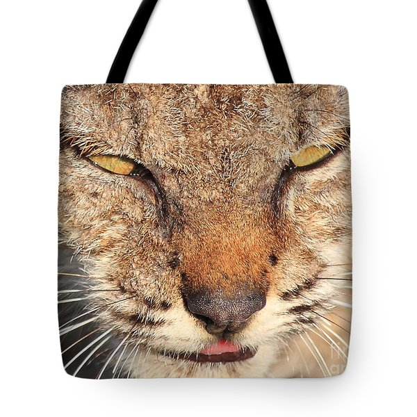 Young Bobcat Portrait 01 Tote Bag by Wingsdomain Art and Photography
