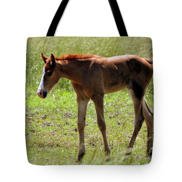 Young Foal Tote Bag by Marty Koch