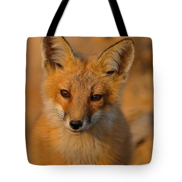 Young Fox Tote Bag by William Jobes