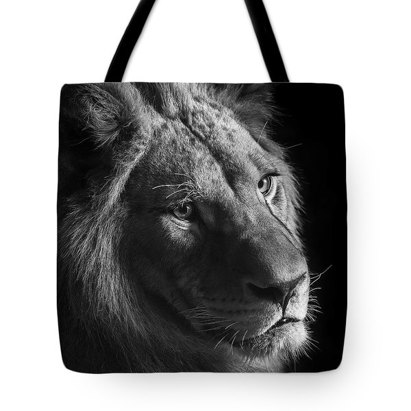 Young Lion In Black And White Tote Bag by Lukas Holas