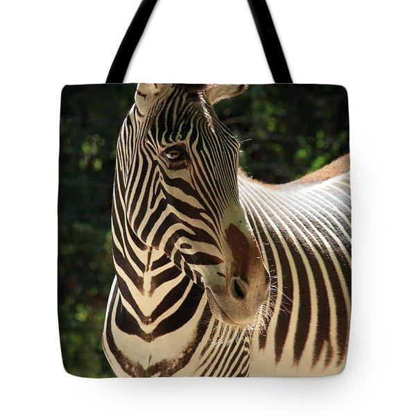 Zebra Portrait Tote Bag by Aidan Moran