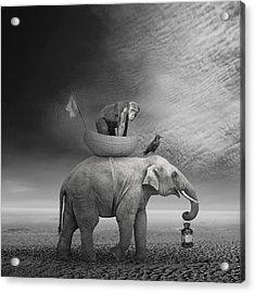 ... .. Acrylic Print by Beata Bieniak