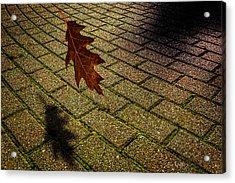 Autumnal Equinox Acrylic Print by Bob Orsillo