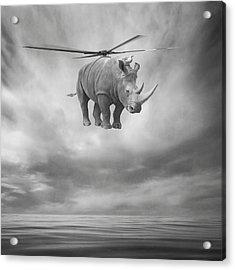 ... Acrylic Print by Beata Bieniak