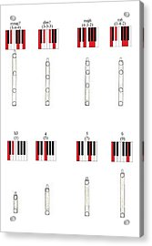 Chords 3 Acrylic Print by Giuliano Capogrossi Colognesi