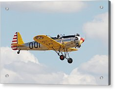 Come Fly With Me Acrylic Print by Pat Speirs