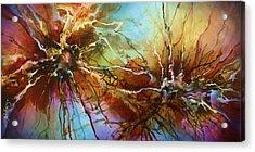' Evolution ' Acrylic Print by Michael Lang