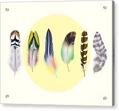 Feathers 2 Acrylic Print by Mark Ashkenazi