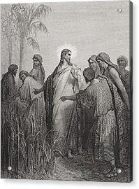 Jesus And His Disciples In The Corn Field Acrylic Print by Gustave Dore