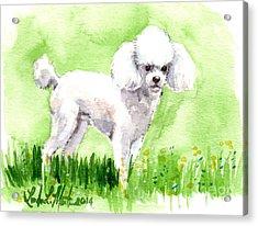 Jorji Standing Acrylic Print by Linda L Martin