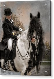 Drum Horse Dressage Acrylic Print by Fran J Scott