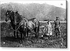 Plowing The Land C. 1890 Acrylic Print by Daniel Hagerman