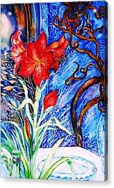 Red Amaryllis  Acrylic Print by Trudi Doyle
