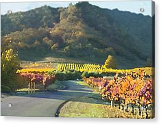The Hills Of Clos La Chance Winery Acrylic Print by Artist and Photographer Laura Wrede