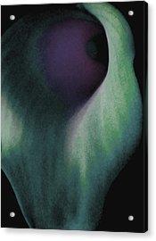 Treasured Acrylic Print by  The Art Of Marilyn Ridoutt-Greene