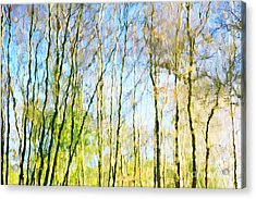 Tree Reflections Abstract Acrylic Print by Natalie Kinnear