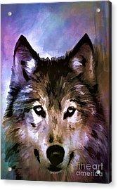 Wolf Acrylic Print by Andrzej Szczerski