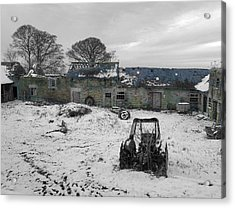 Abandoned To Nature Acrylic Print by David Birchall
